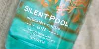 silent pool-200